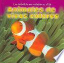 Animales de vivos colores (Colorful Animals)