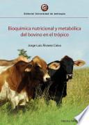Bioquímica nutricional y metabólica del bovino en el trópico