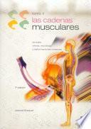 CADENAS MUSCULARES, LAS (Tomo II). Lordosis, cifosis, escoliosis y deformaciones torácicas (Bicolor)