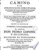 Camino a la perfeccion christiana