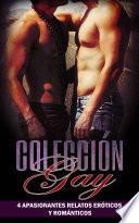 Colección Gay