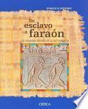De esclavo a faraón