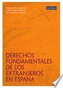 Derechos Fundamentales de los extranjeros en España (e-book)