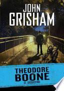El secuestro (Theodore Boone 2)