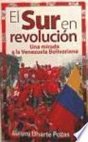 El sur en revolución