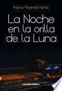 La noche en la orilla de la luna