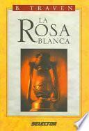 La Rosa Blanca / The White Rose