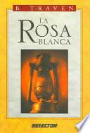 La Rosa Blanca / The White Rose