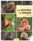 Los animales del bosque / Forest Animals